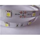 5050 Gün Işığı 3 Chipli Dış Mekan LED Slikonlu