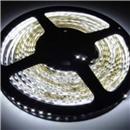 3528 Beyaz LED Slikonlu 24V