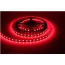 3528 Kırmızı Dış Mekan LED Slikonlu 120V